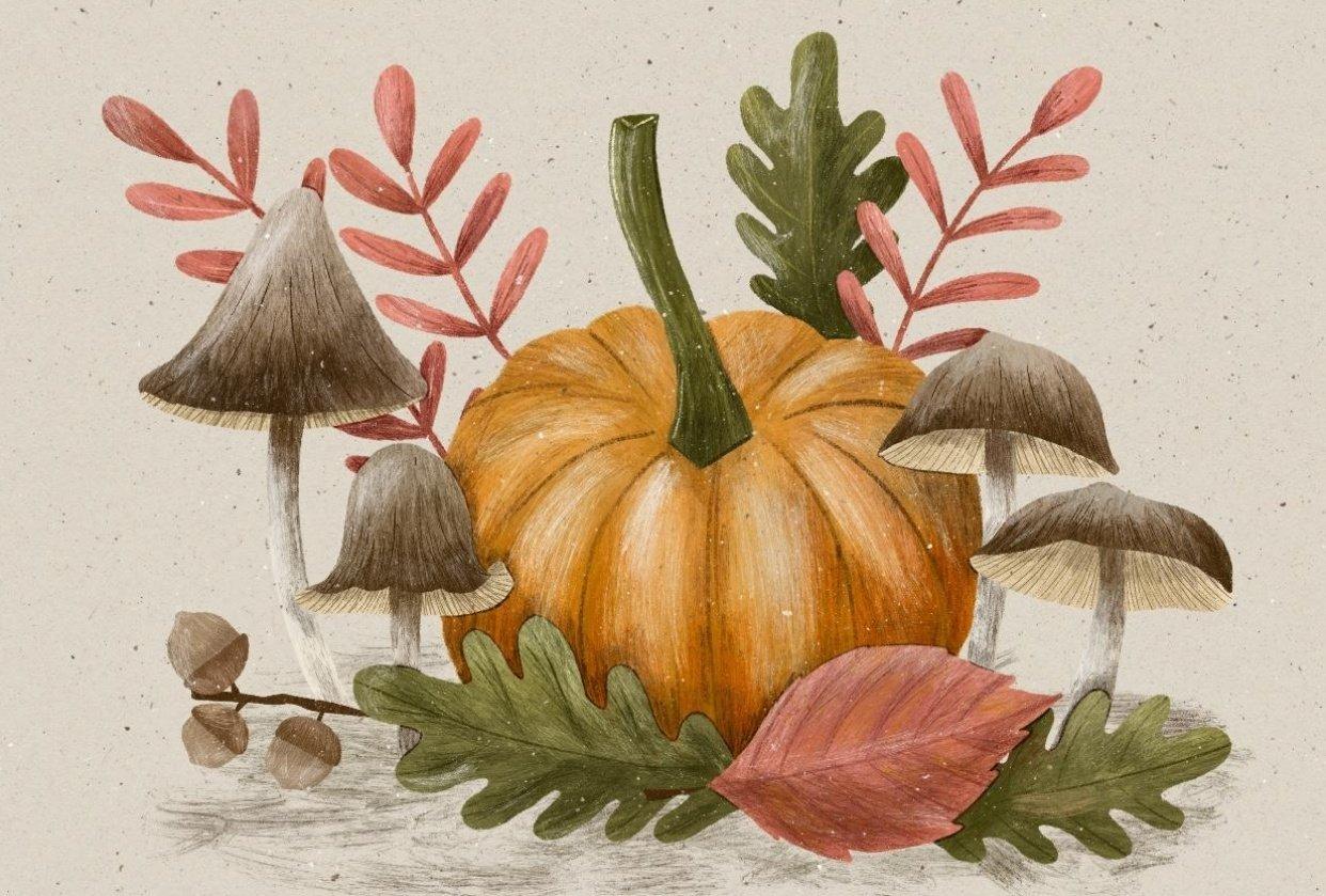 Procreate Autumn Illustration - student project