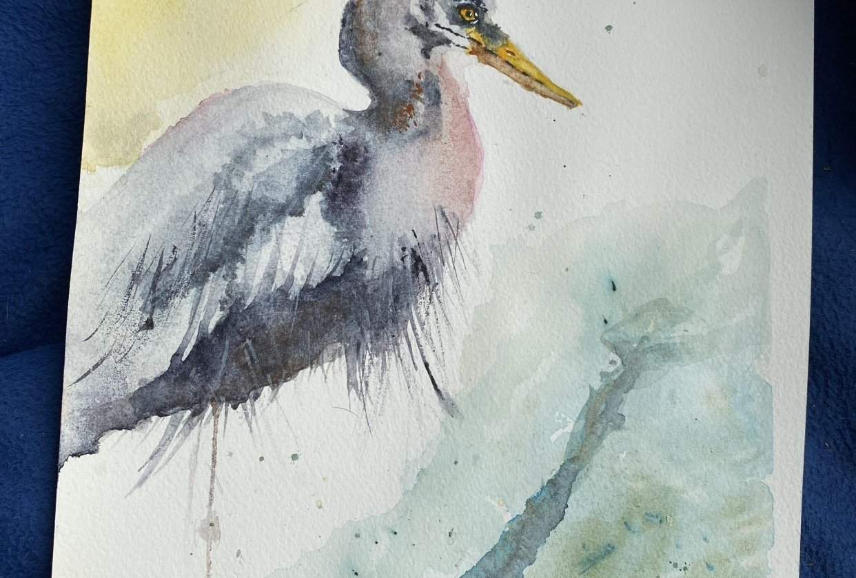 Harry Heron - student project