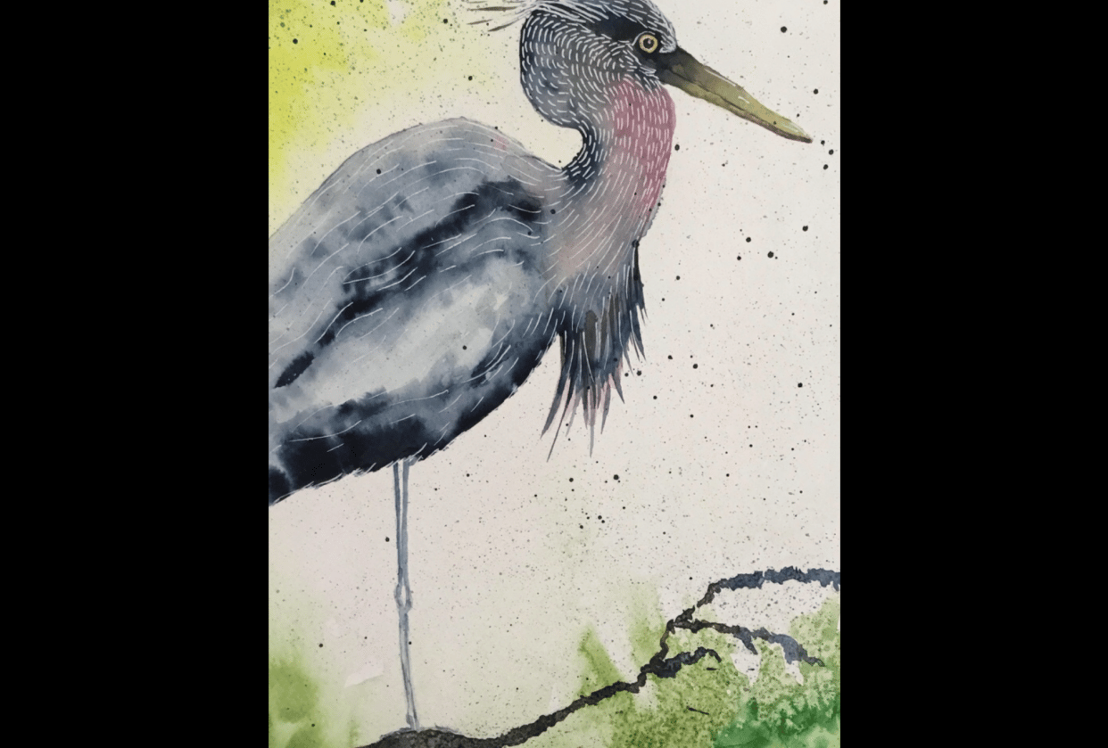 Vivid heron - student project