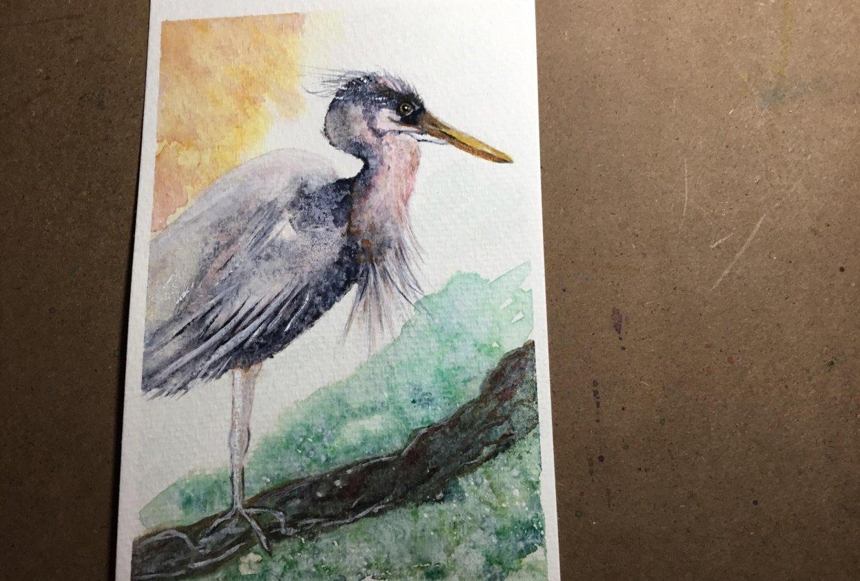 Postcard Heron - student project