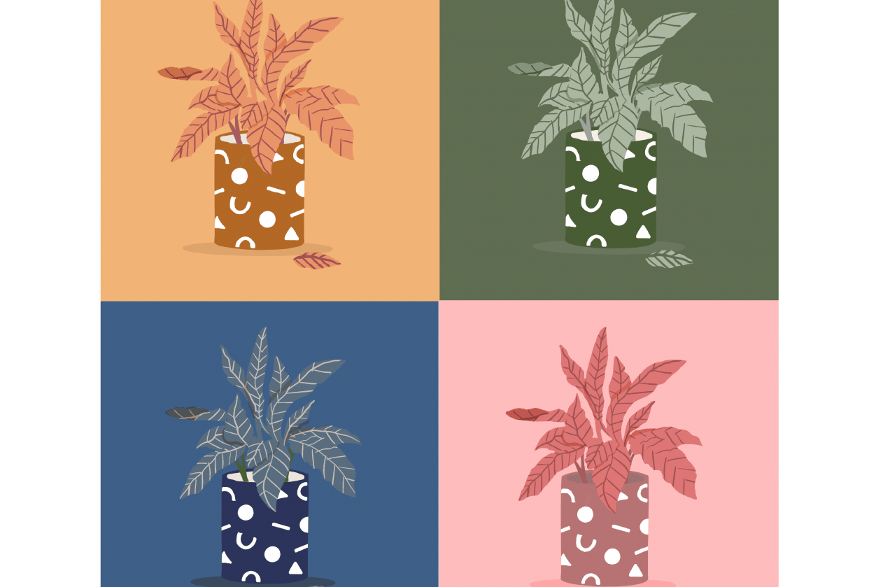 Colour sense - student project