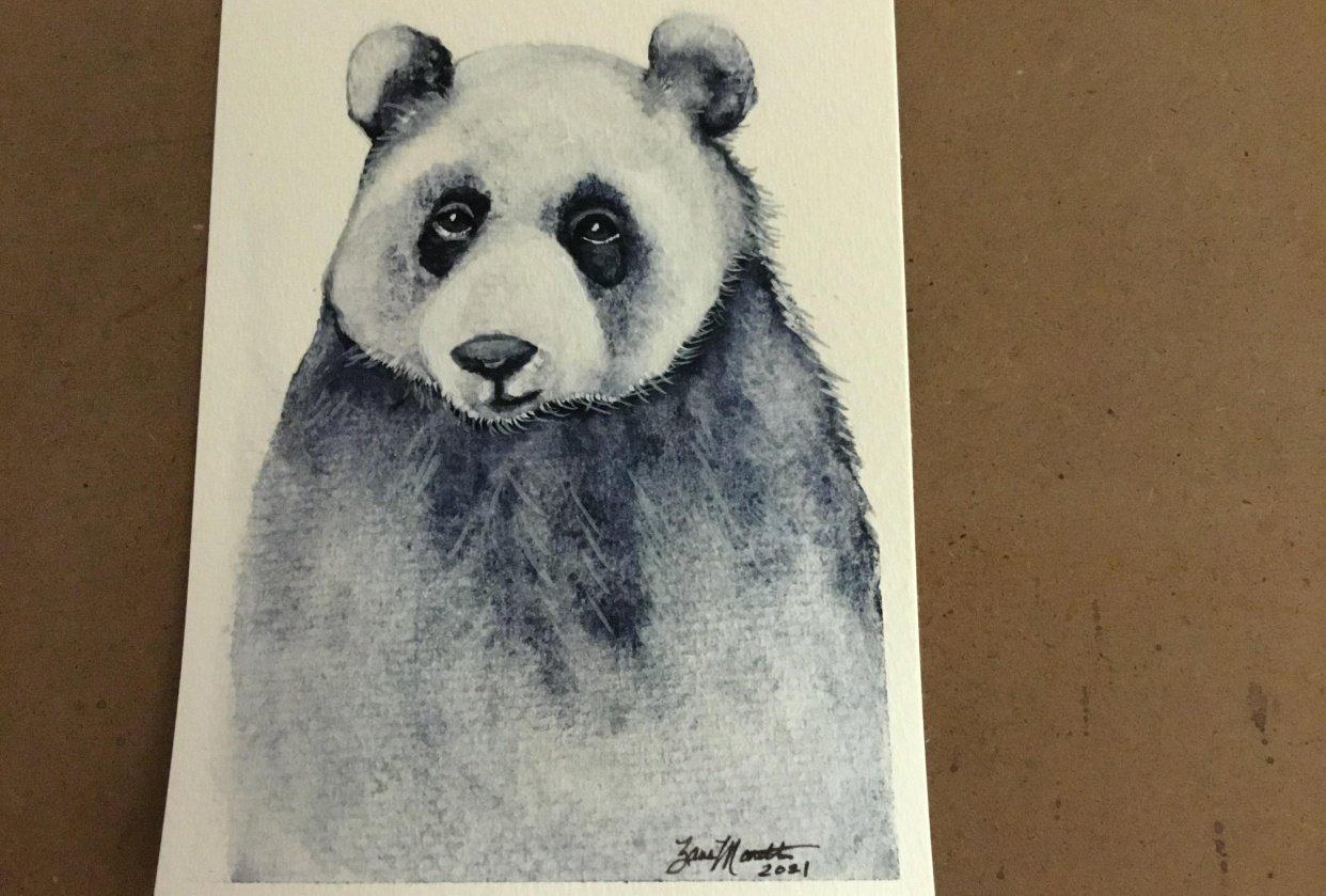 Shy Panda - student project