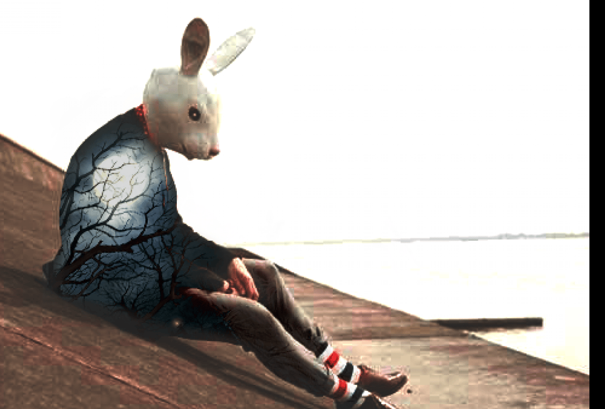 Lonely bunny - student project