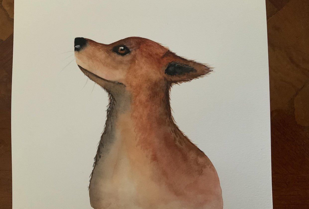 Fabulous Foxy - student project