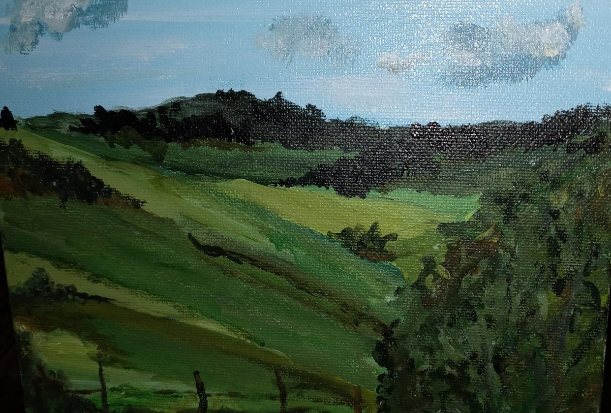 Loose landscape - student project