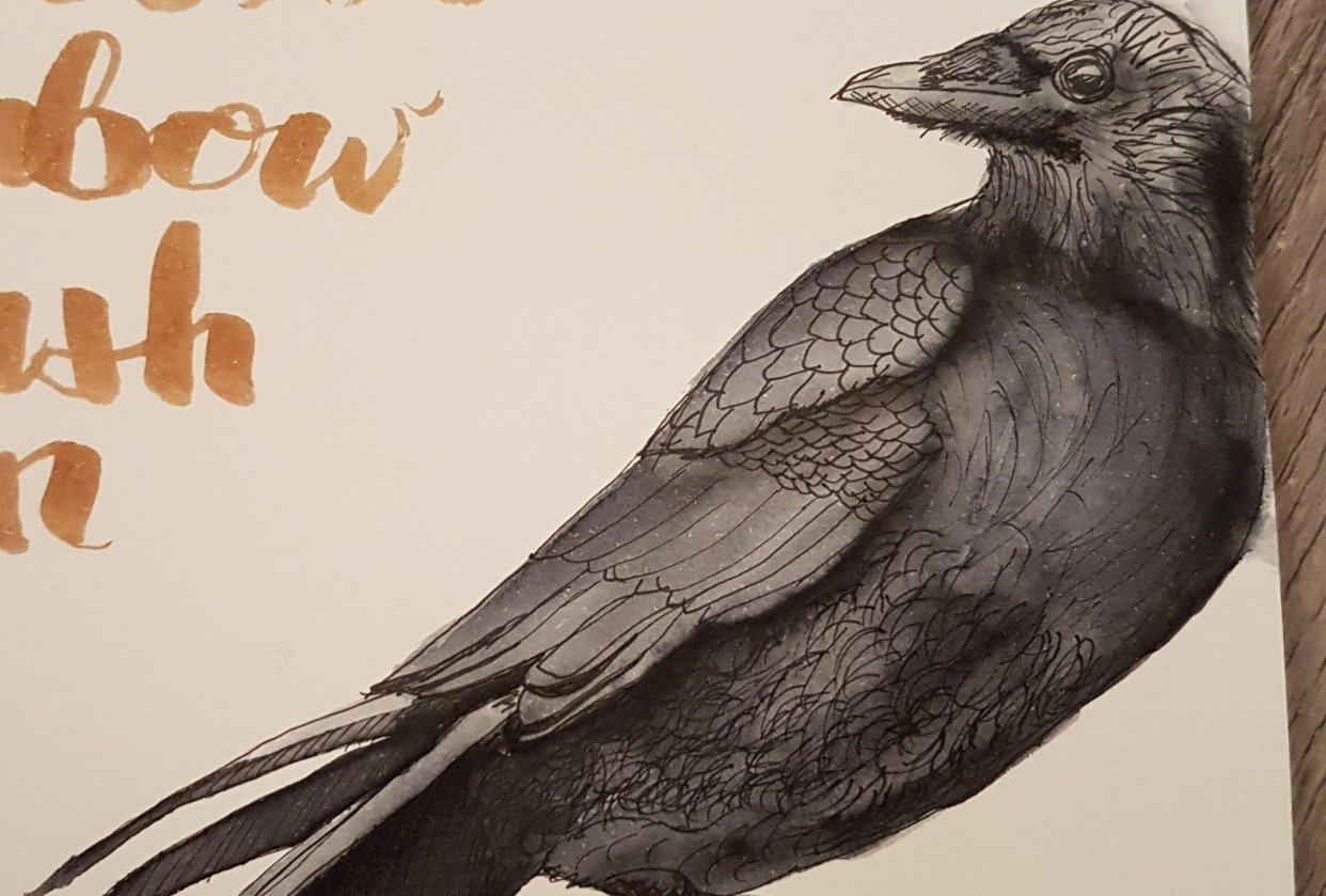 Crow - student project