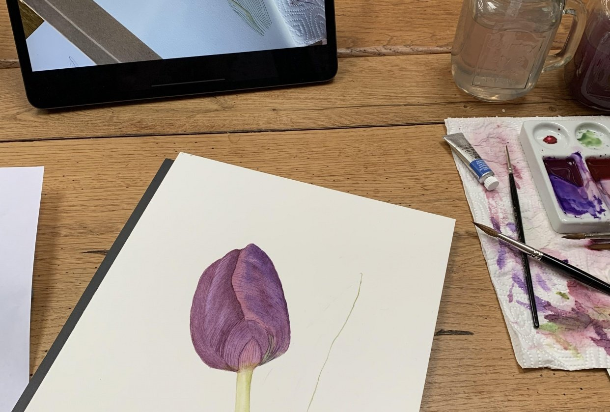 First tulip attempt - student project