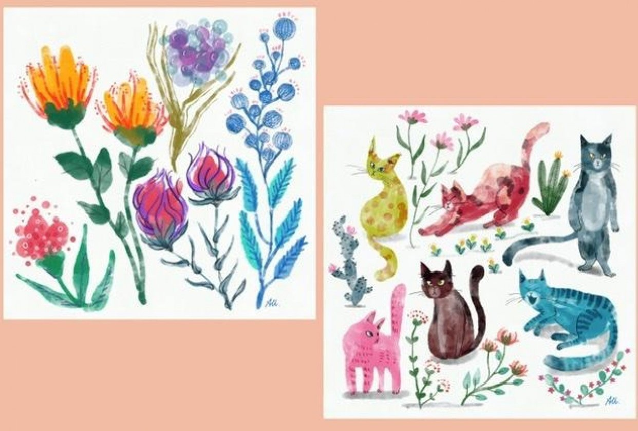 """""""Imperfect"""" flowers and cats - student project"""