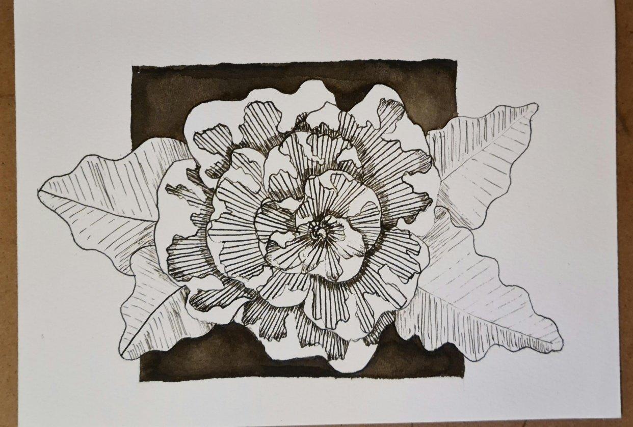 Dip-pen flower - student project