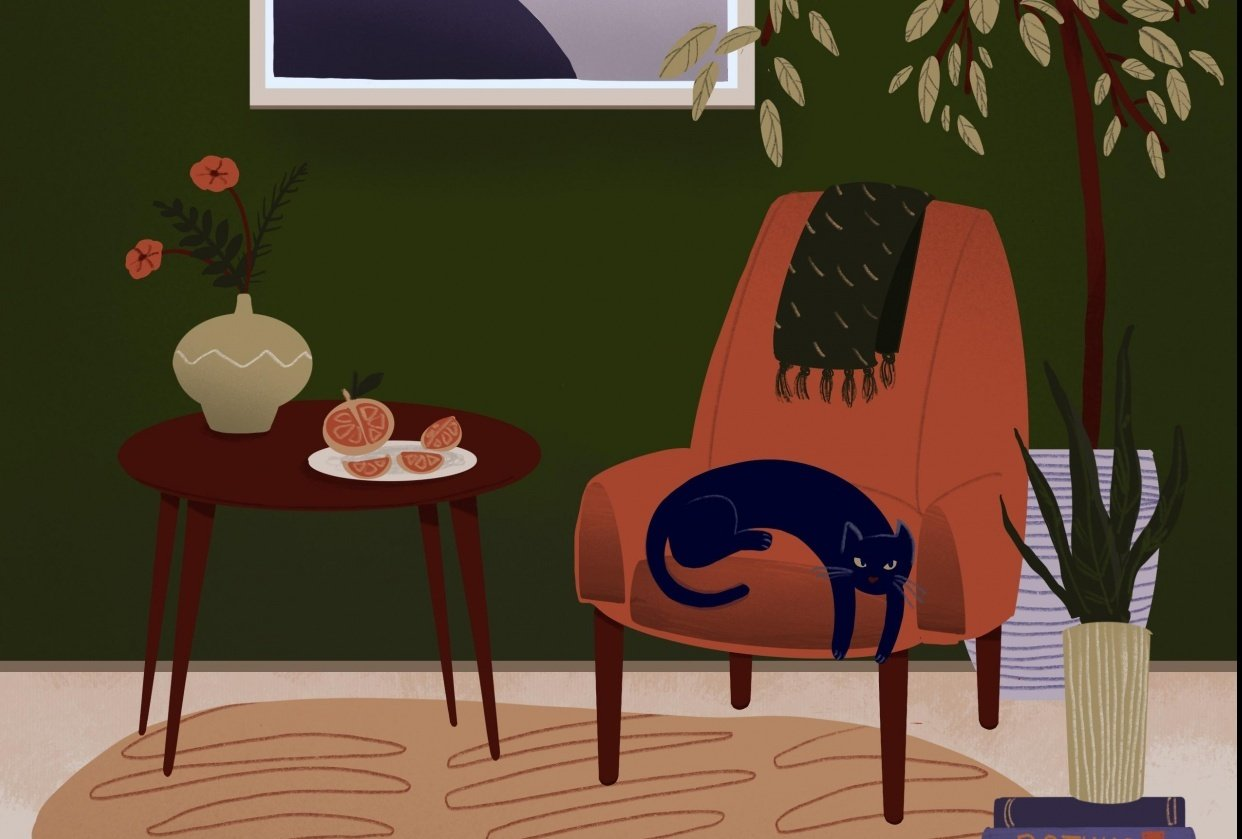 cat with orange slices - student project