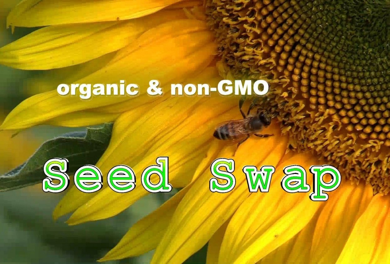 Seed Swap - student project
