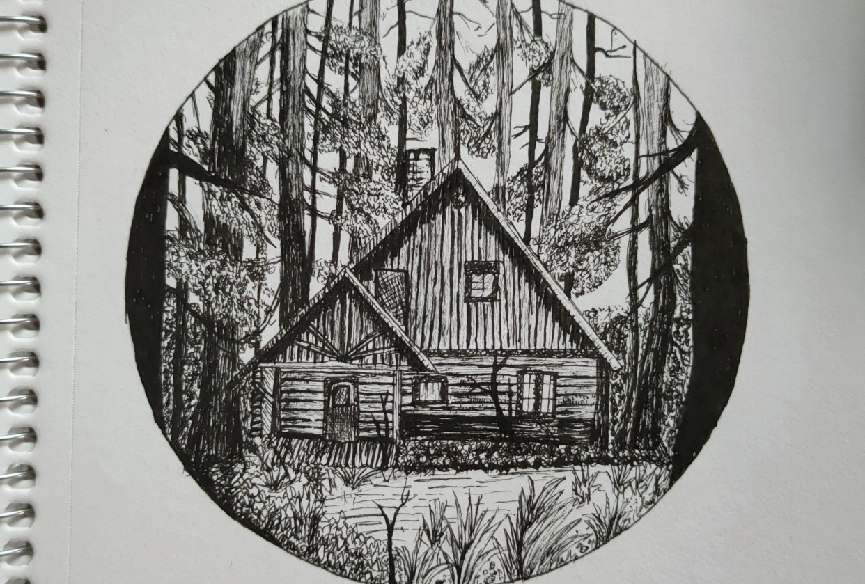 Best experience with pen and ink - student project
