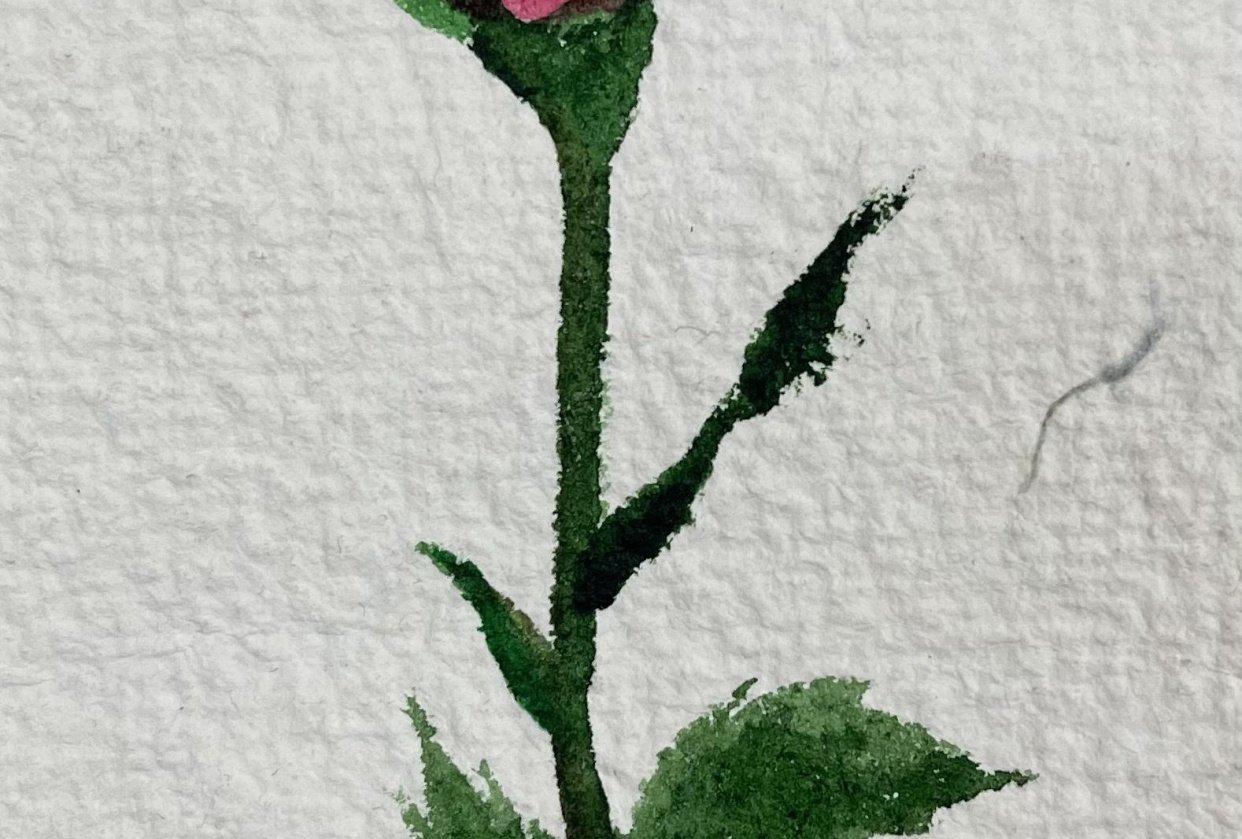 Water color flower by Karanveer - student project