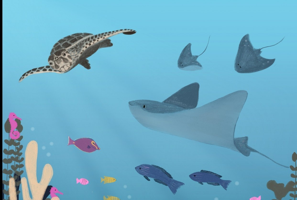 Sea Life - student project