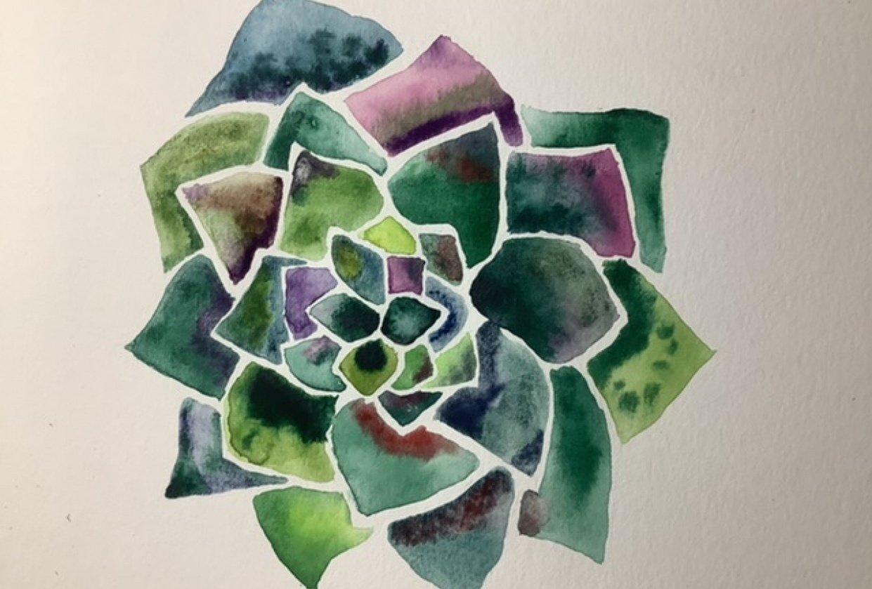 Bitchin Botanicals - student project