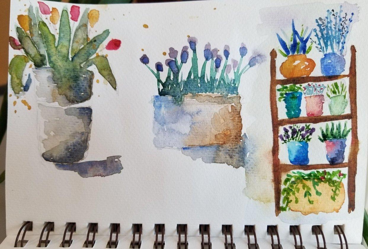 Flower & Window Warm-ups - student project