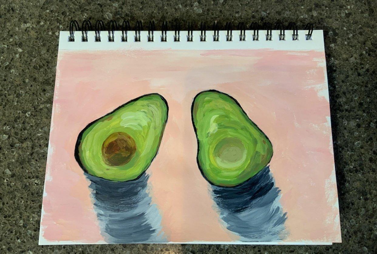 Avocado fruit study - student project