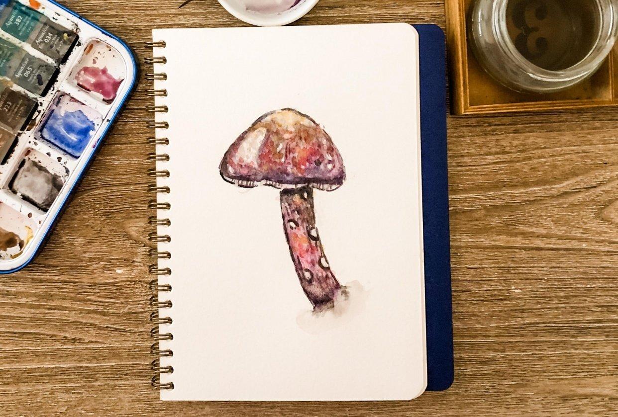 Mushroom - student project