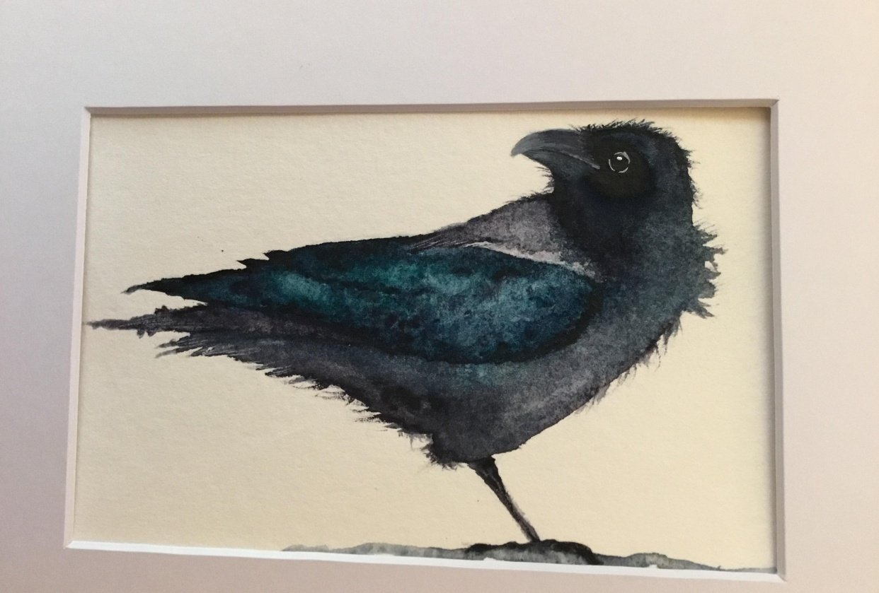 Postcard Raven - student project