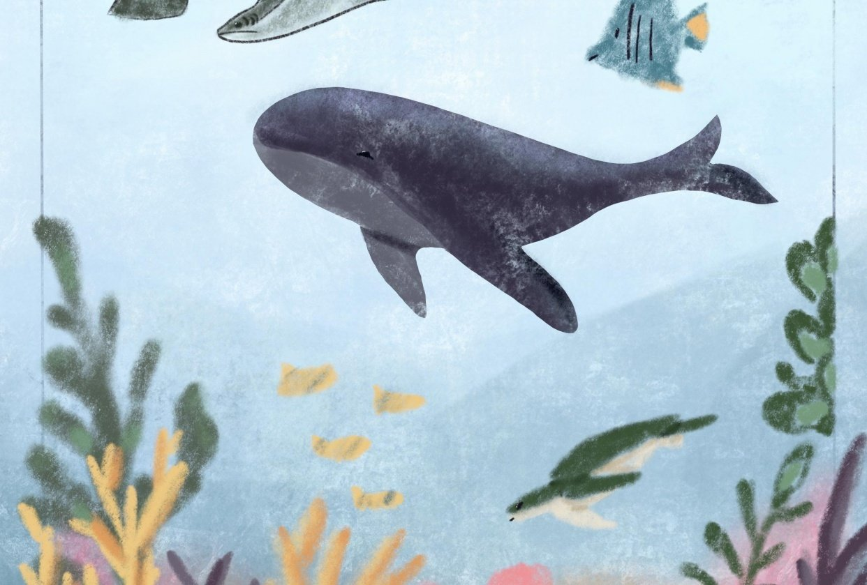 Underwater world - student project
