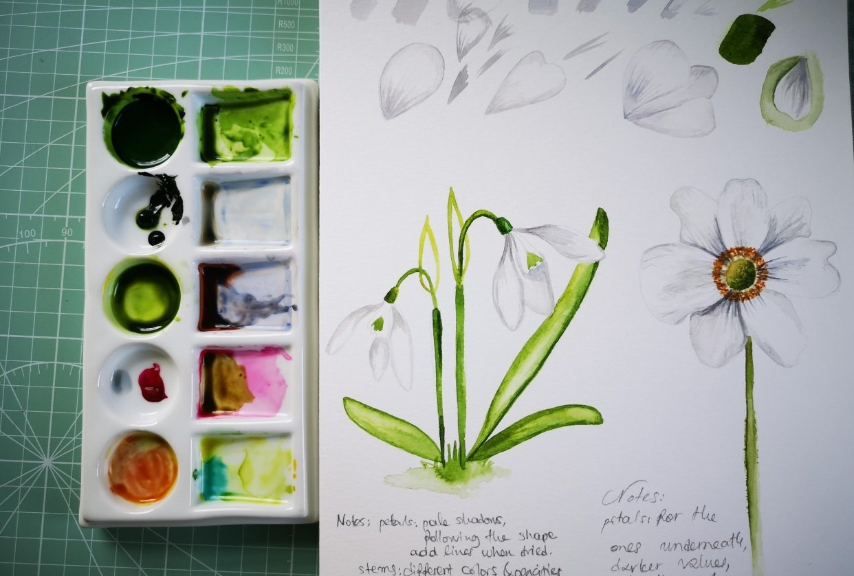White Flowers - student project