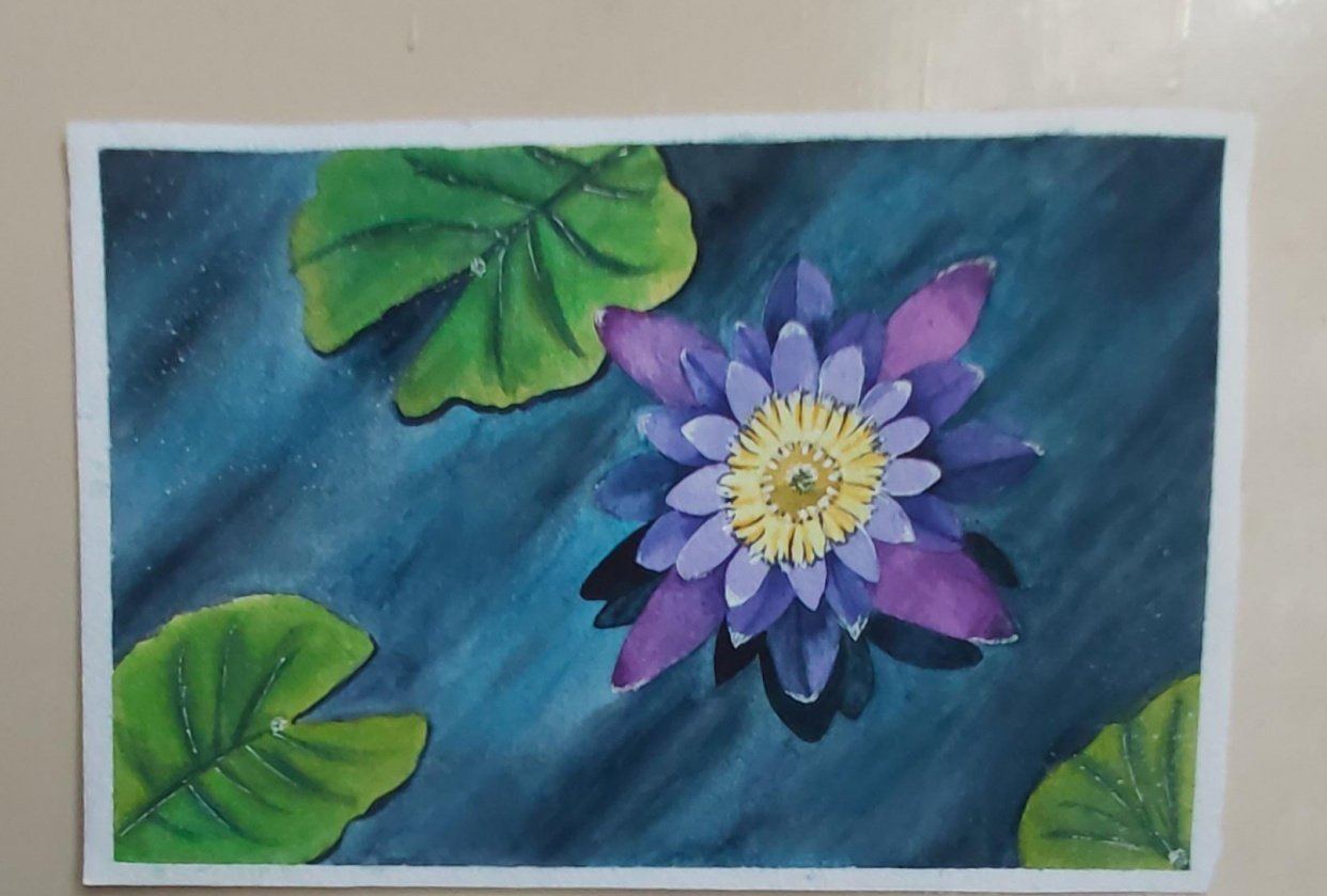 Pink & Purple Flowers - student project