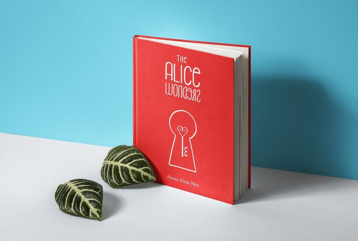 The Alice Wonders - student project