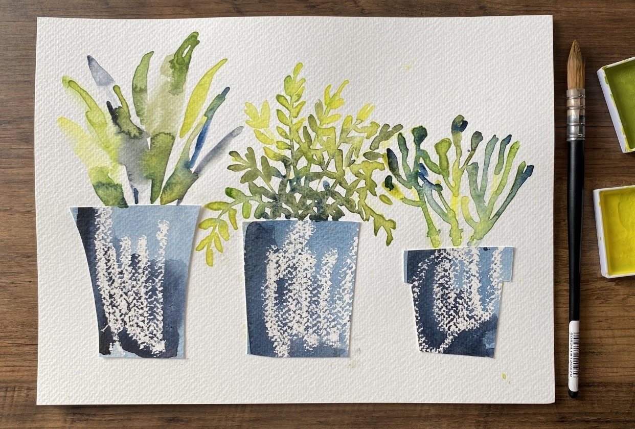 House Plants: Fern, succulent and potted palm - student project
