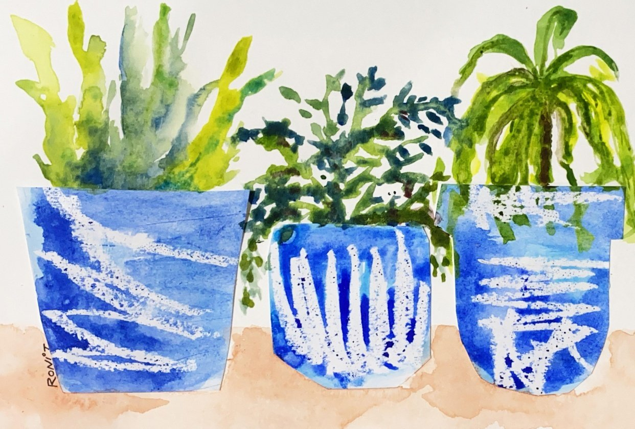 Plants in pots - student project