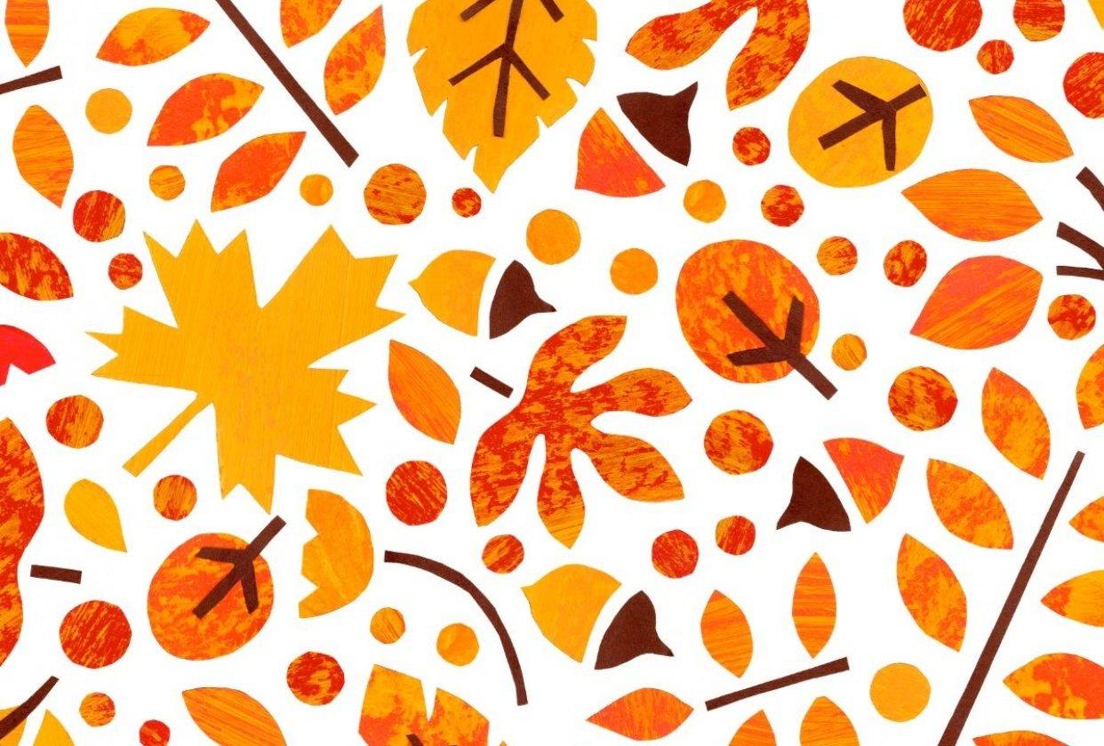 Autumn Foliage - student project