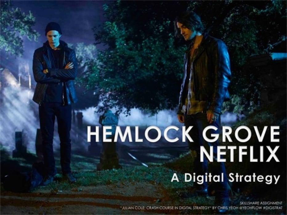 Netflix Digital Strategy - student project