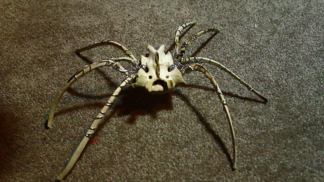 Bone Spider  - student project