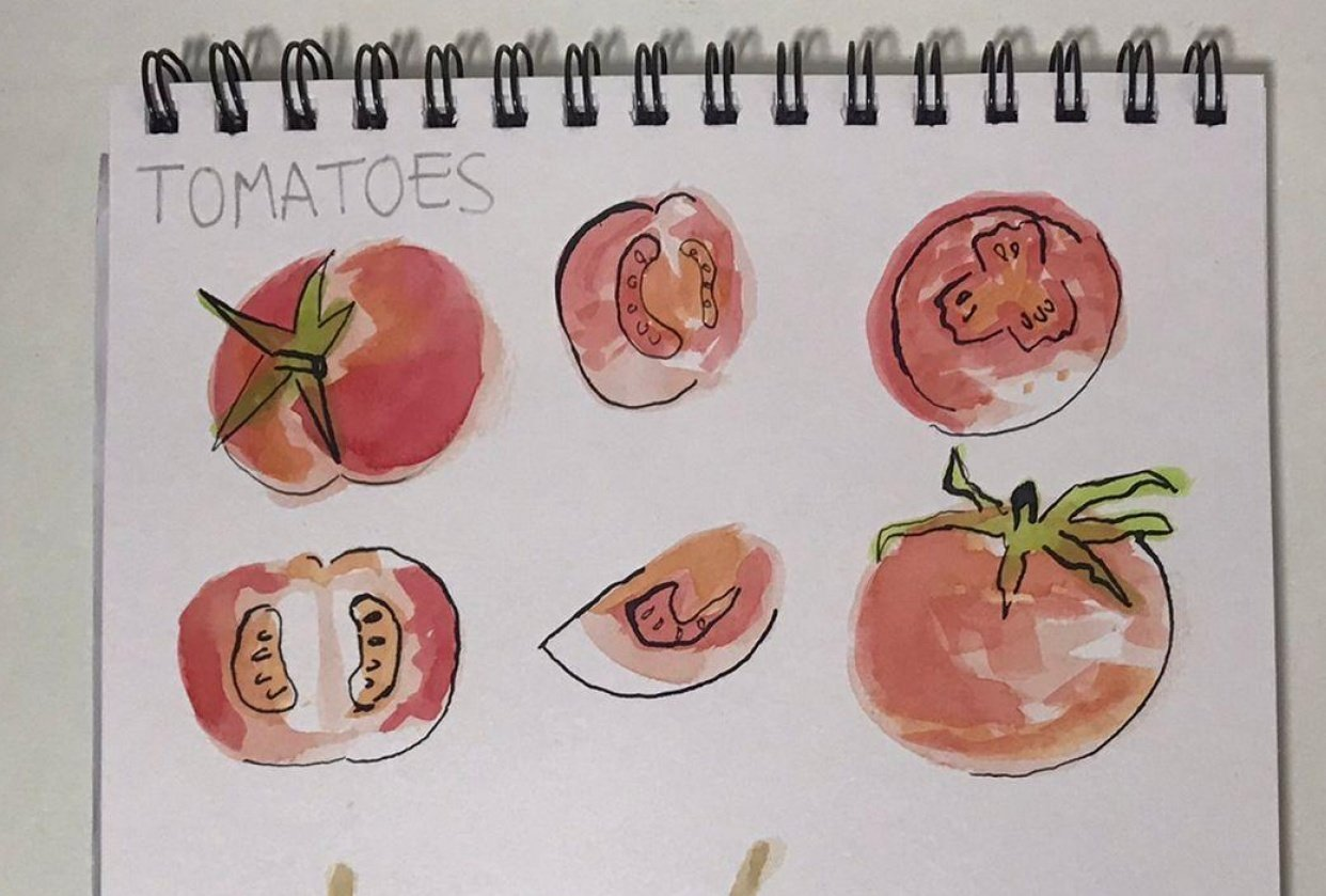 Tomatoes, pears, poppies and sea shells - student project