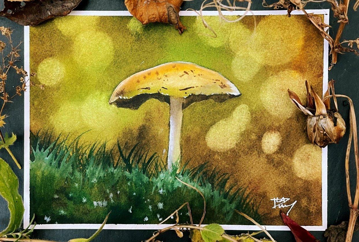 Charming bokeh mushroom - student project