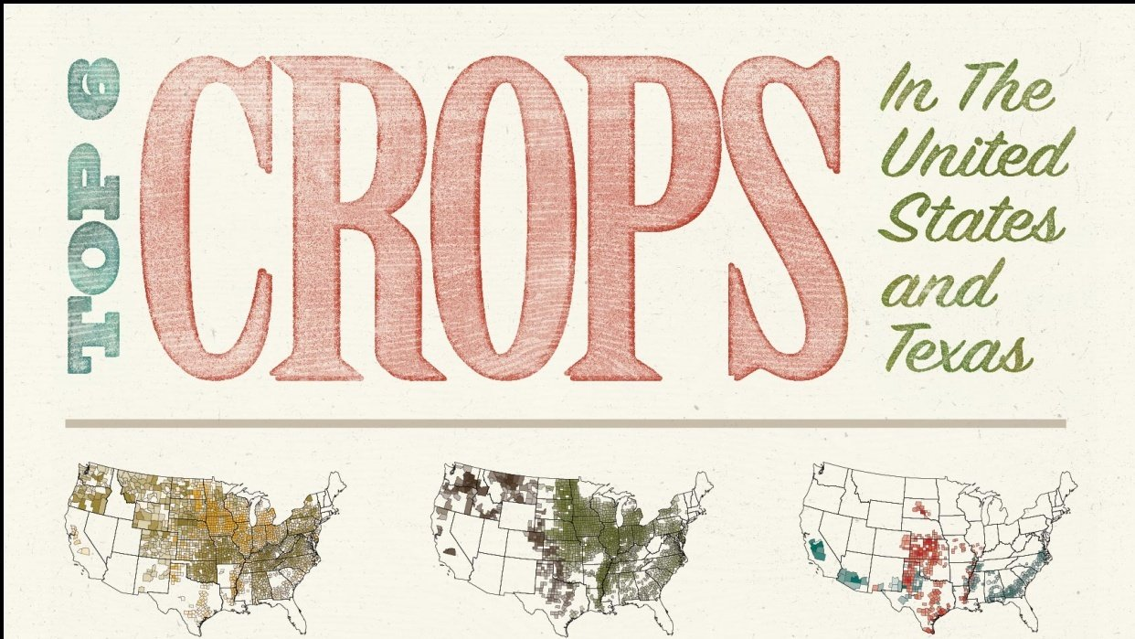 Top 6 Crops - student project