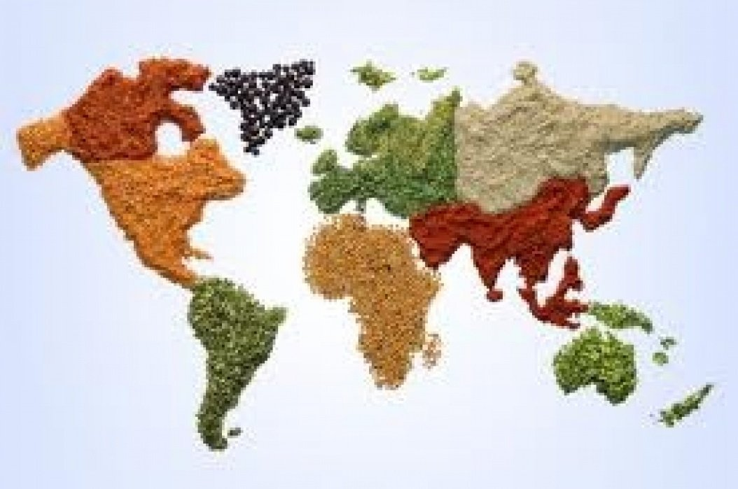 World Food Flavors - student project