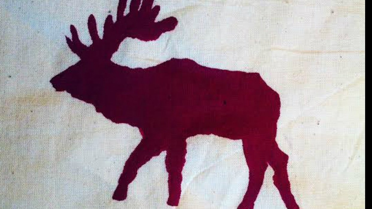 Moose Tote - student project