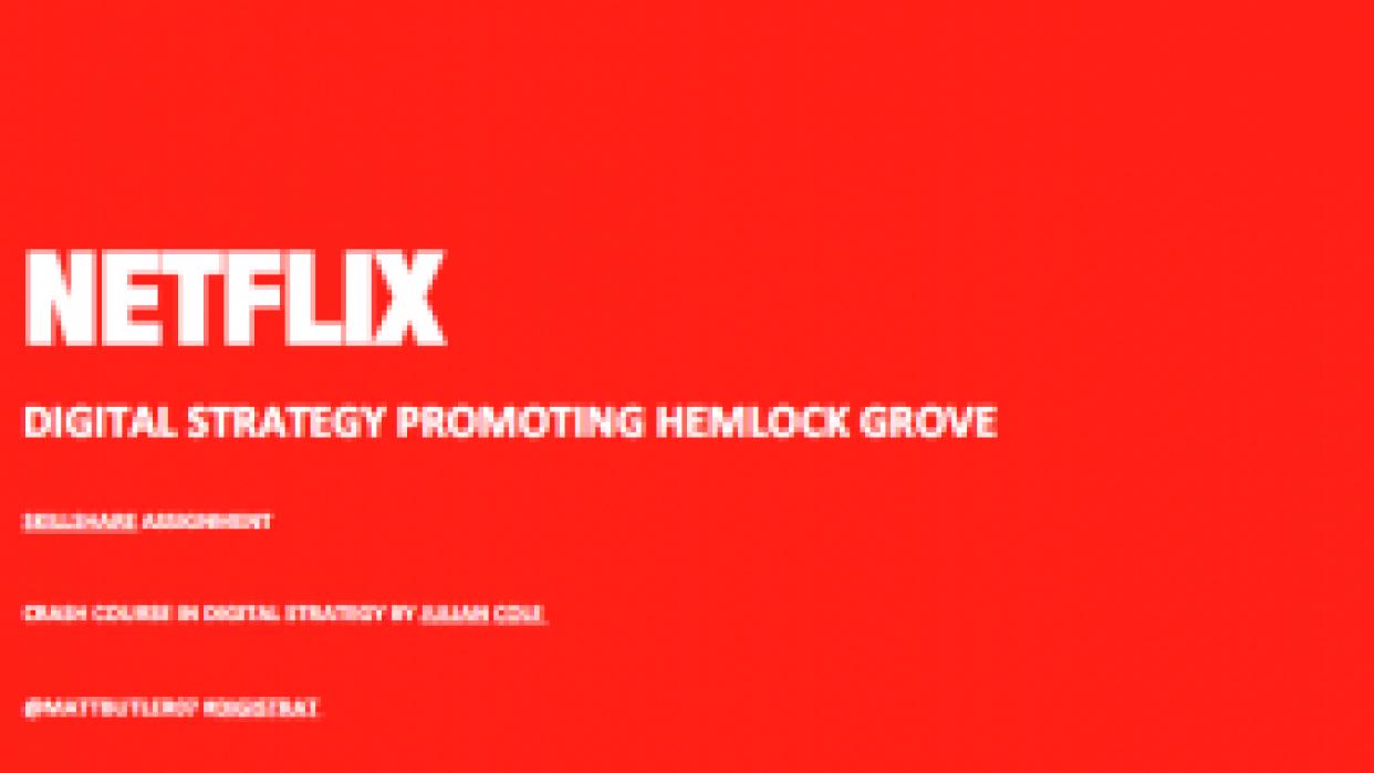 Matt Butler - Netflix Digital Strategy - student project