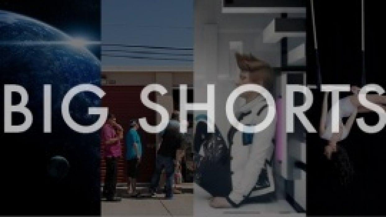 Big Shorts - student project