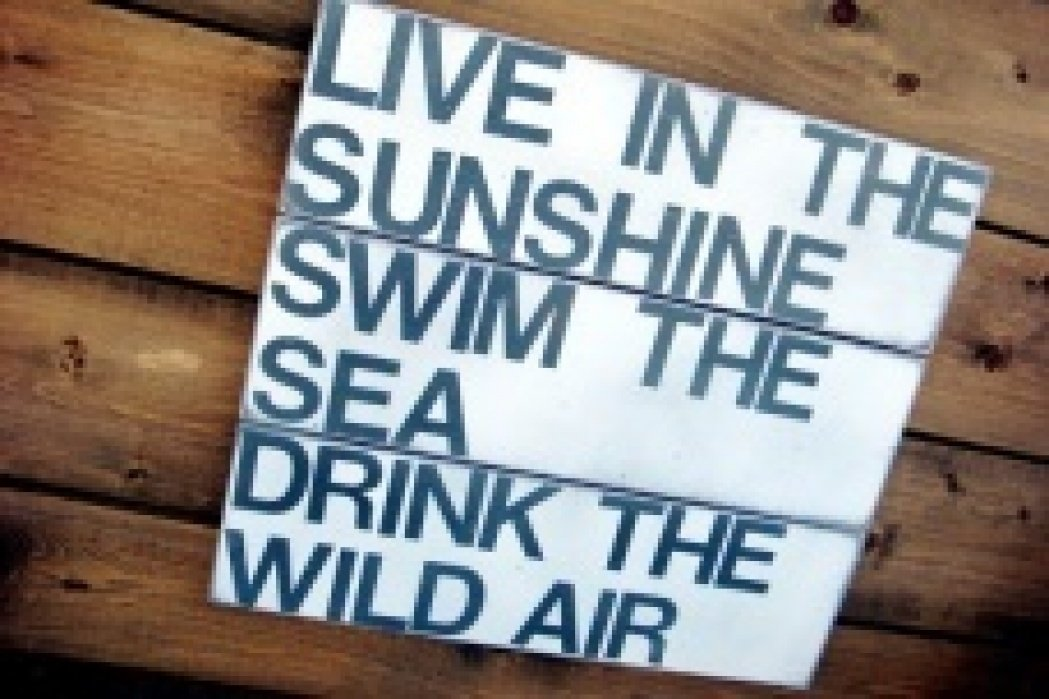 Live in the Sunshine - student project