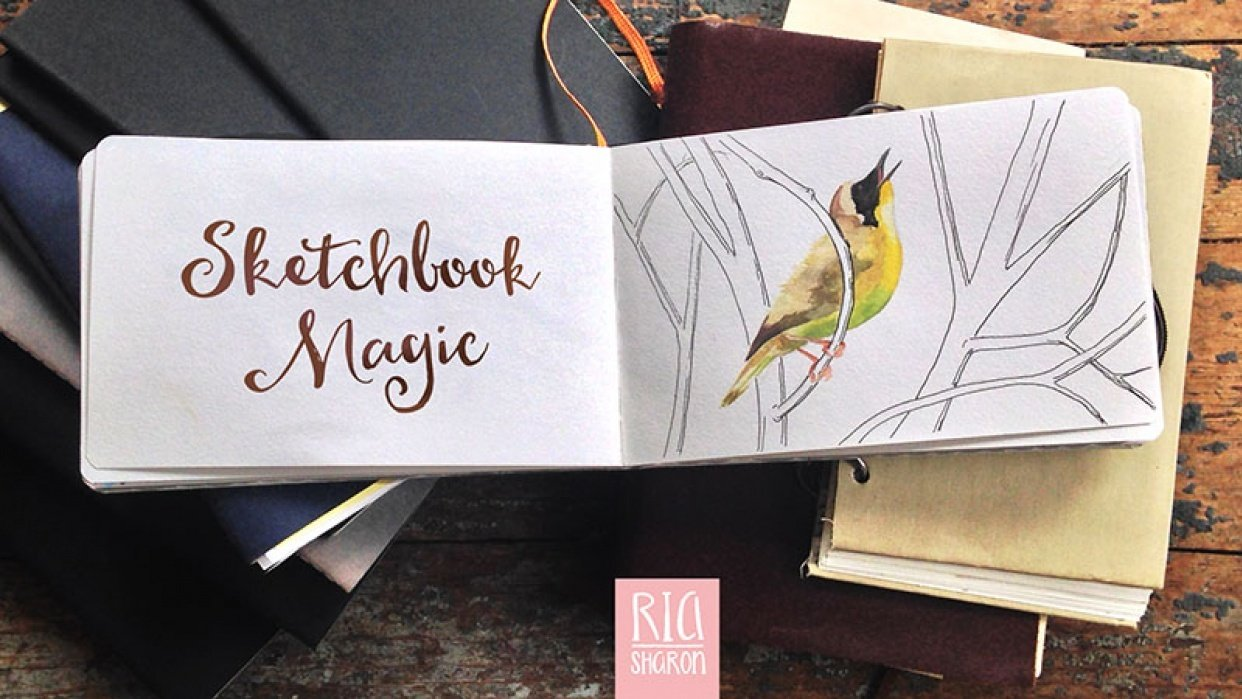 Sketchbook Magic Videos - student project