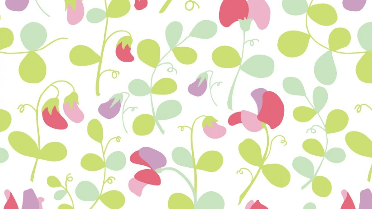 Sweet peas floral pattern - student project