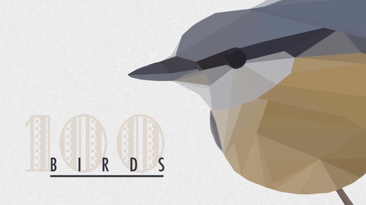 100 Birds - student project