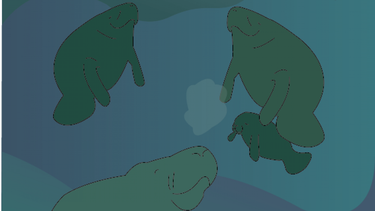 Floating in a sea of quiet - student project