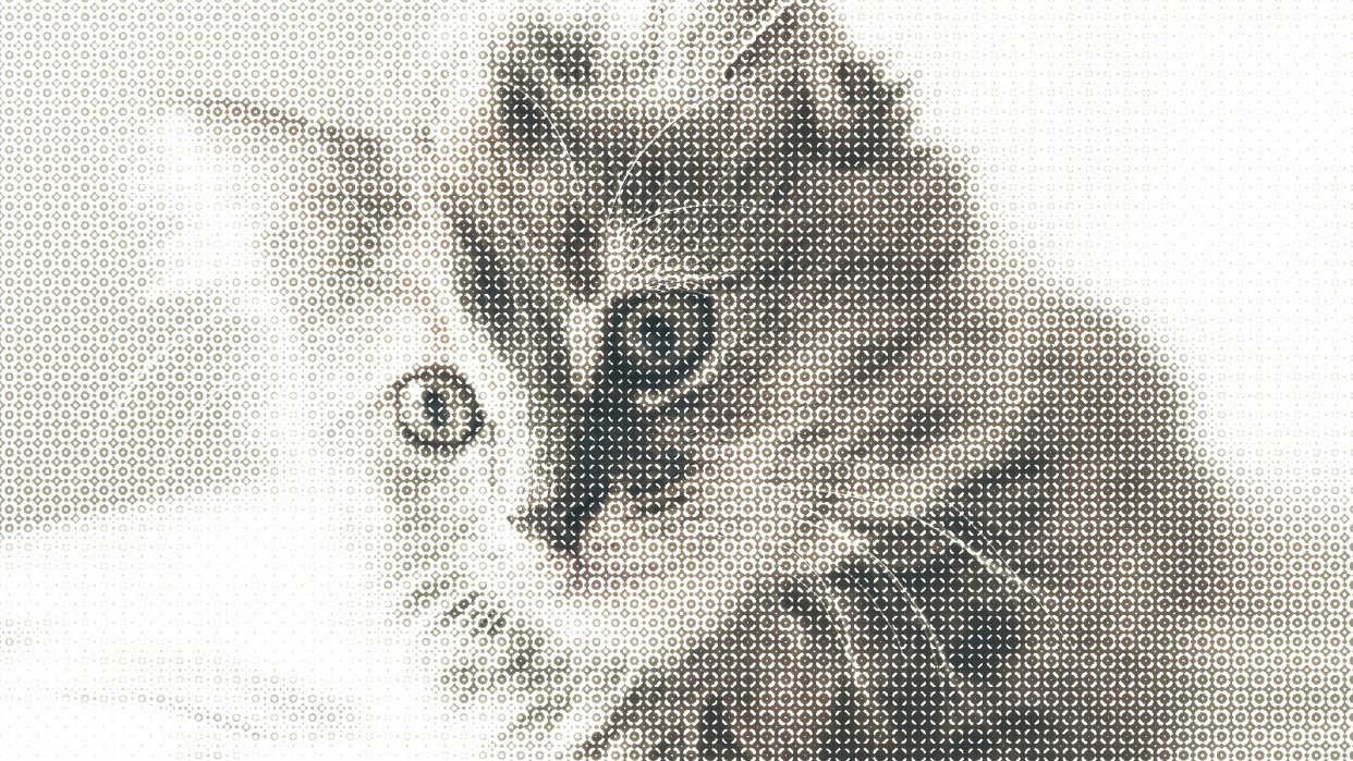 Halftone Cat - student project