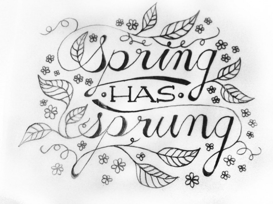 Spring has Sprung - student project
