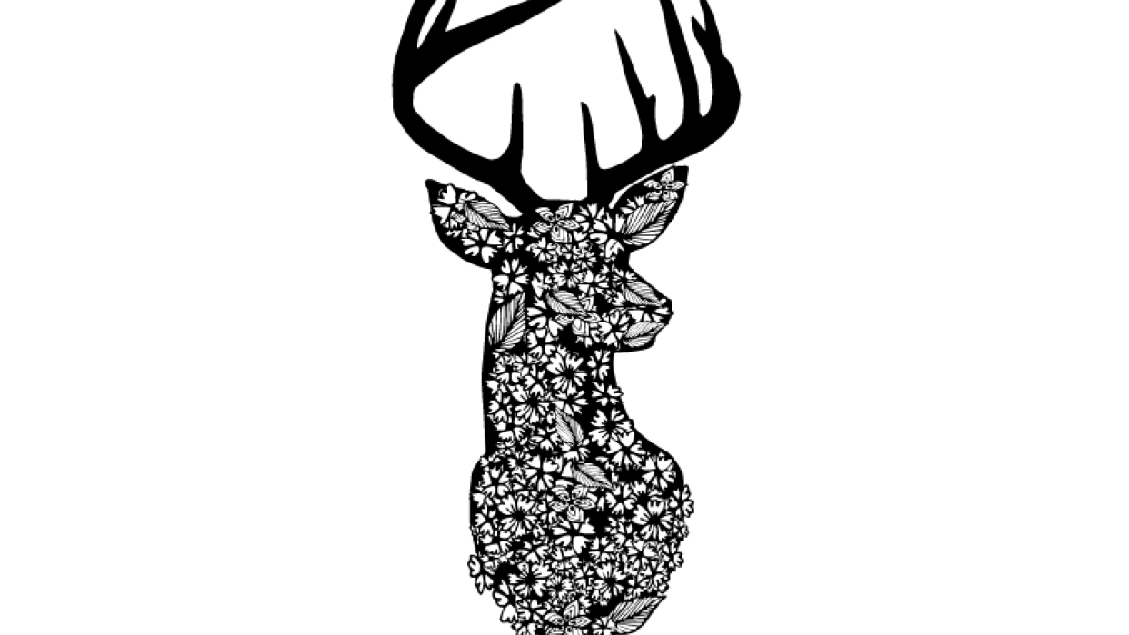Floral Wildlife Prints - student project