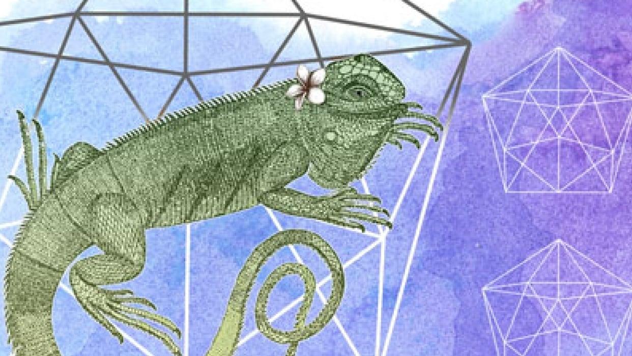 Iguana ID Board - student project