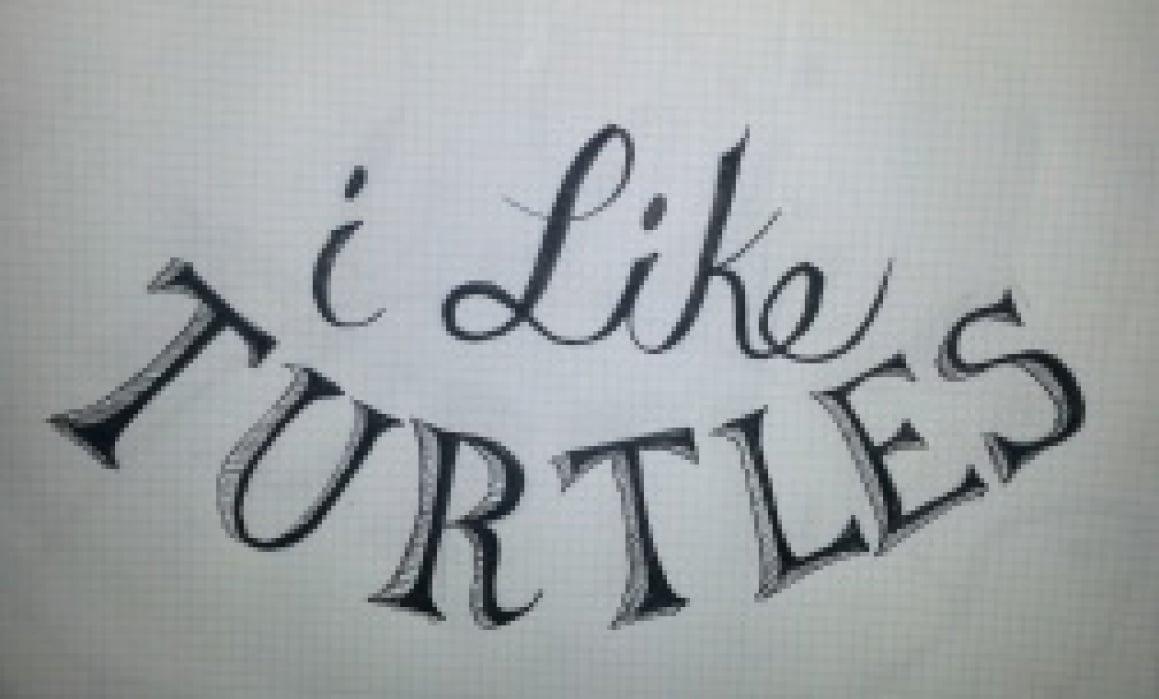 I like turtles - student project