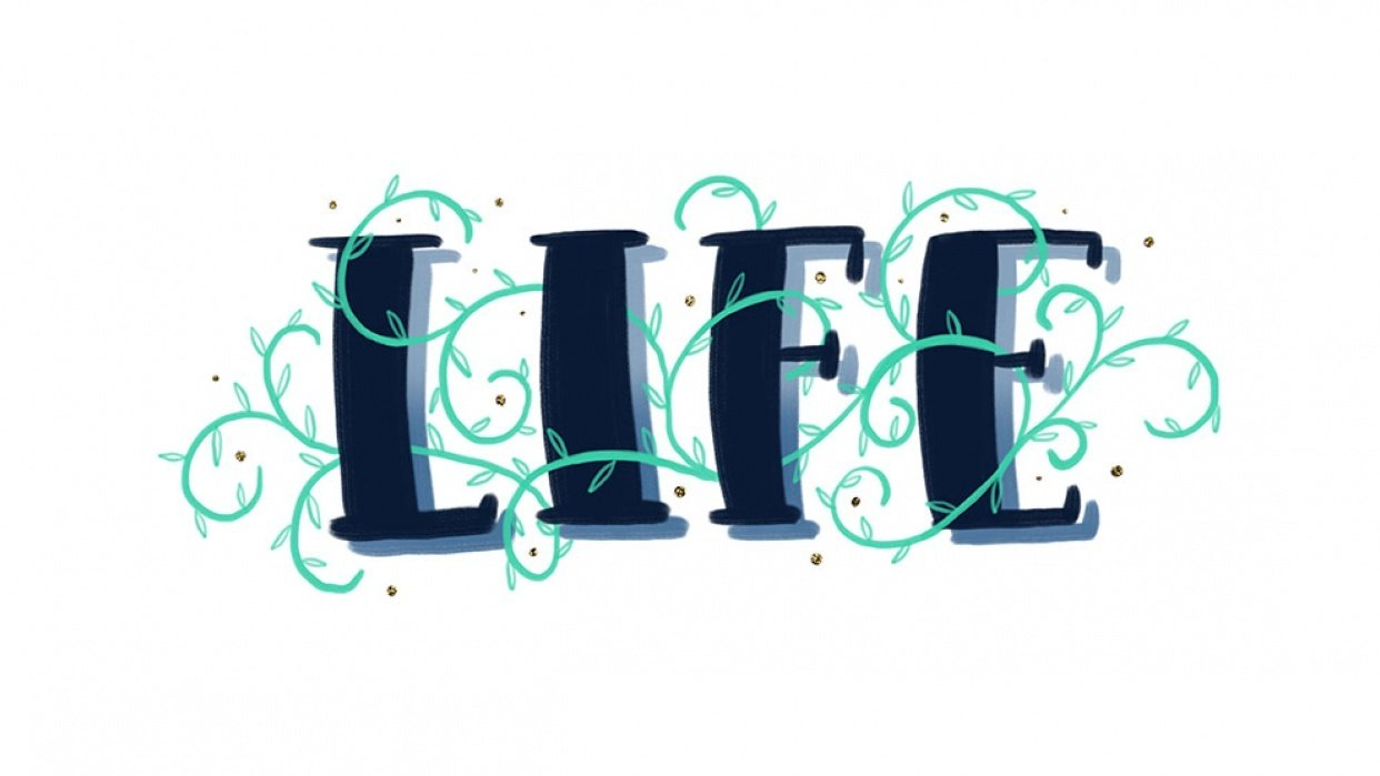 Sample Project: LIFE - student project